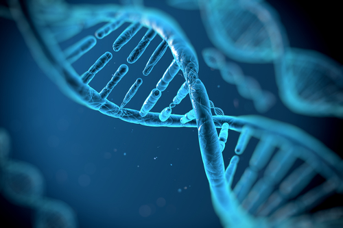 genetic testing gene