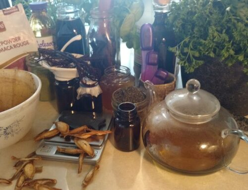 Simple Herbal Teas, Vinegars, and Elixirs for Iron Deficiency